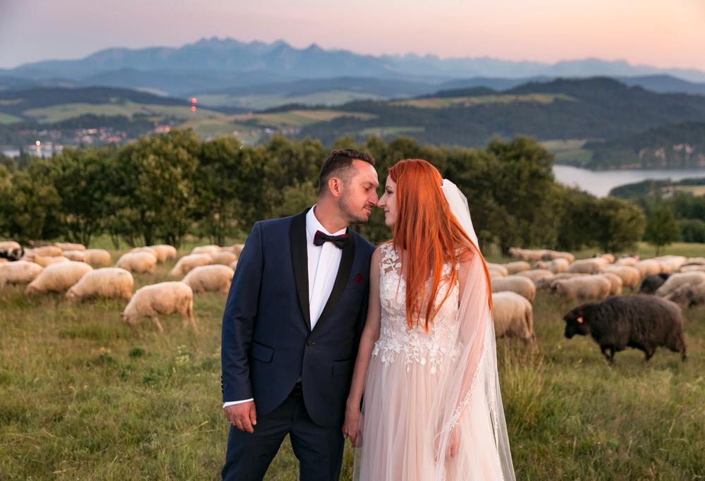 Para Młoda na sesji ślubnej w Pieninach, w tle Tatry, zalew Czorsztyński i pasące się owieczki
